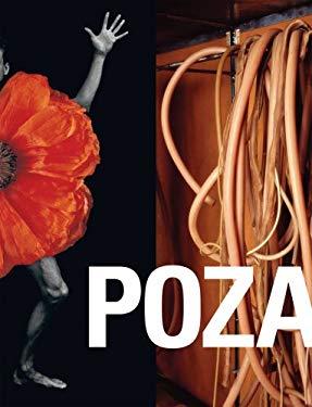 Poza: On the Polishness of Polish Contemporary Art 9780971785939