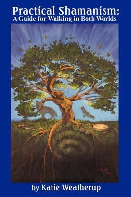 Practical Shamanism, a Guide for Walking in Both Worlds 9780977815401