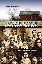 Twelve Below Zero 4357425