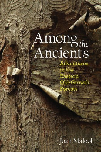 Among the Ancients: Adventures in the Eastern Old-Growth Forests 9780983011101