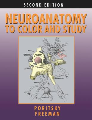 Neuroanatomy to Color and Study 9780983578413
