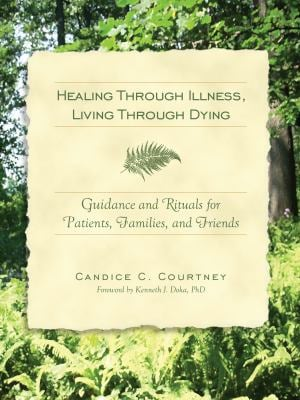 Healing Through Illness, Living Through Dying: Guidance and Rituals for Patients, Families, and Friends