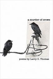 A Murder of Crows 12445848