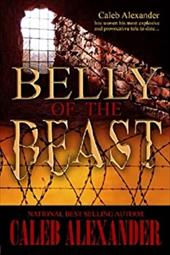 Belly of the Beast 16478694