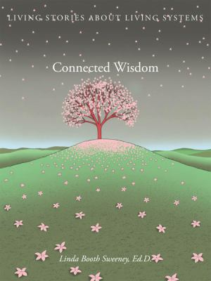 Connected Wisdom: Living Stories about Living Systems 9780982248010