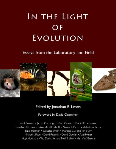 In the Light of Evolution: Essays from the Laboratory and Field 9780981519494
