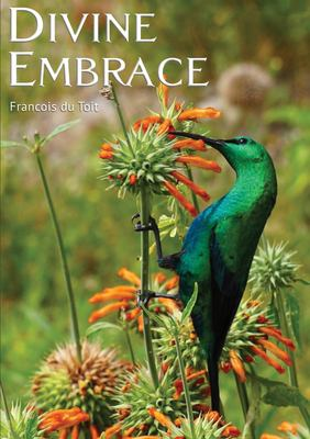 Divine Embrace 9780992176914