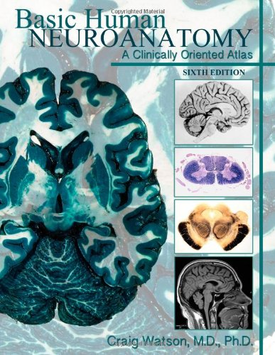 Basic Human Neuroanatomy: A Clinically Oriented Atlas