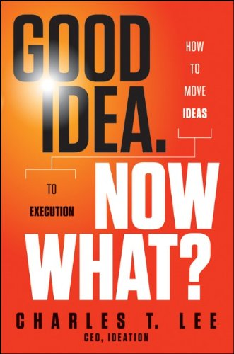 Good Idea. Now What: How to Move Ideas to Execution 9781118163993