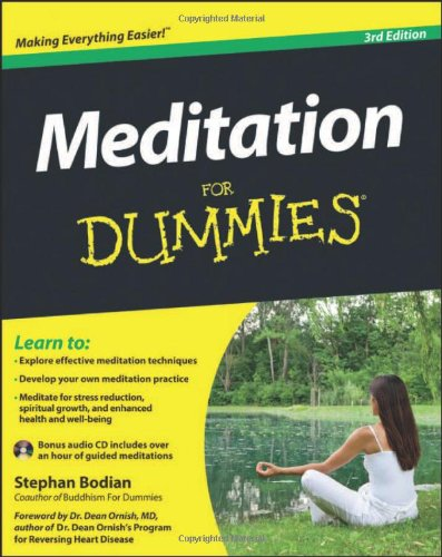 Meditation for Dummies 9781118291443
