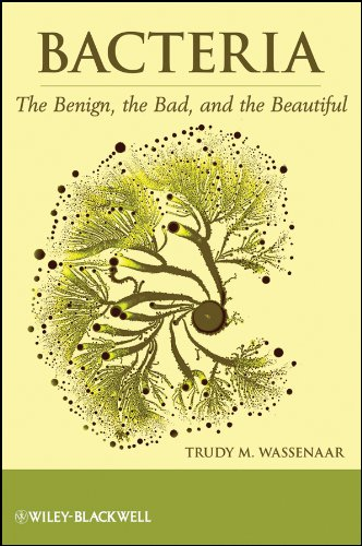 Bacteria: The Benign, the Bad, and the Beautiful 9781118107669