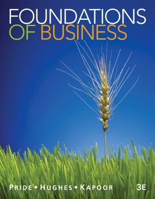 Foundations of Business - 3rd Edition