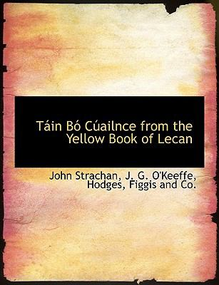 T in B C Ailnce from the Yellow Book of Lecan 9781140648130