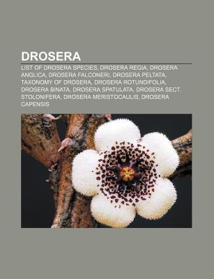 big sale 440b4 a8cce Drosera: List of Drosera Species, Drosera Regia, Drosera ...
