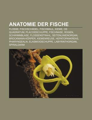 Anatomie Der Fische: Flosse, Fischsch del, Fischmaul, Kieme, OS ...