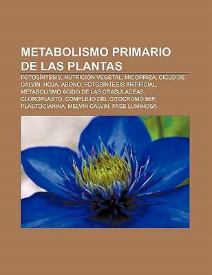 Metabolismo Primario de Las Plantas: Fotos Ntesis, Nutrici N Vegetal, Micorriza, Ciclo de Calvin, Hoja, Abono, Fotos Ntesis Artificial