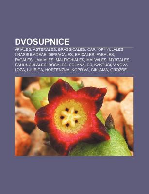 Dvosupnice: Apiales, Asterales, Brassicales, Caryophyllales, Crassulaceae, Dipsacales, Ericales, Fabales, Fagales, Lamiales, Malpi