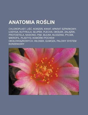 Anatomia Ro Lin: Chloroplast, Li , Korze , Kwiat, Aparat Szparkowy, Odyga, Kutykula, S Upek, Plecha, Ok Ek, Zal Ek, Protostela, Nasiono 9781231811252