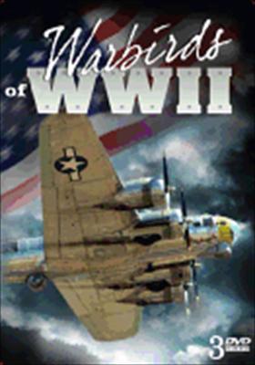 Warbirds of WWII Set