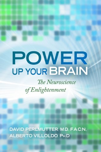 Power Up Your Brain 9781401928186