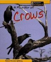 A Murder of Crows 6067436