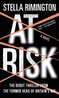 At Risk 9781400079810