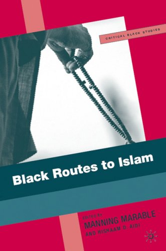 Black Routes to Islam 9781403977816