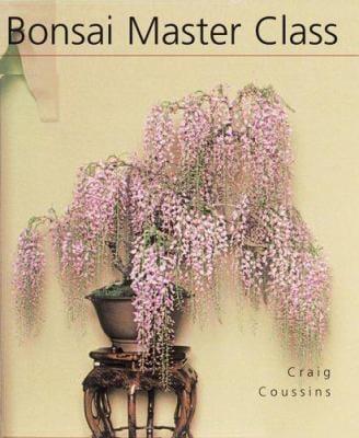 Bonsai Master Class 9781402735479
