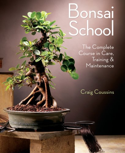 Bonsai School 9781402735608