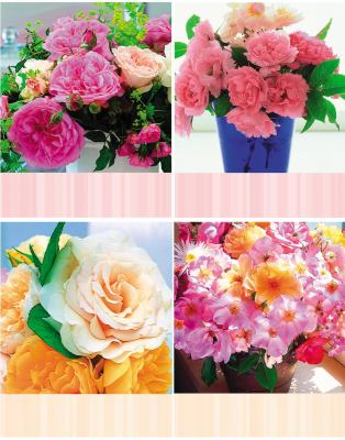 Bouquet of Roses Signature Vertical Note Cards [With 13 with EnvelopesWith Quotes]