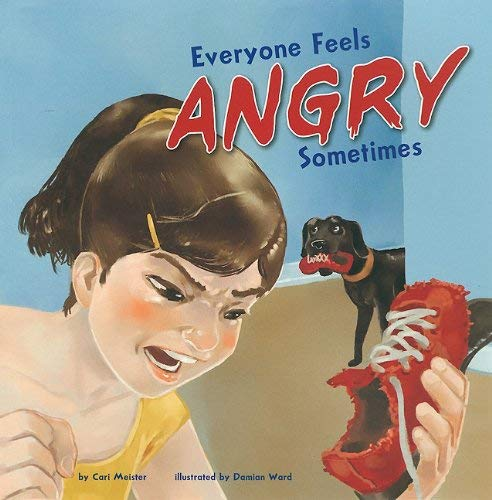 Everyone Feels Angry Sometimes 9781404861121