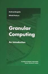 Granular Computing: An Introduction