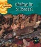Hiding in a Forest 6067478