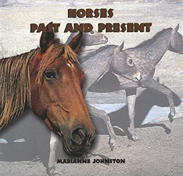 Horses: Past and Present 9781404255661