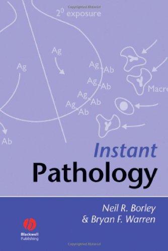 Instant Pathology 9781405132909