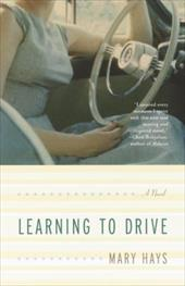 Learning to Drive 6021752