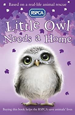 Little Owl Needs A Home