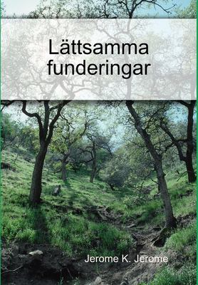 Lttsamma Funderingar 9781409205838