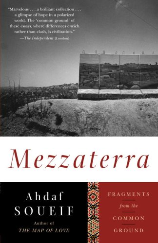 Mezzaterra: Fragments from the Common Ground 9781400096633