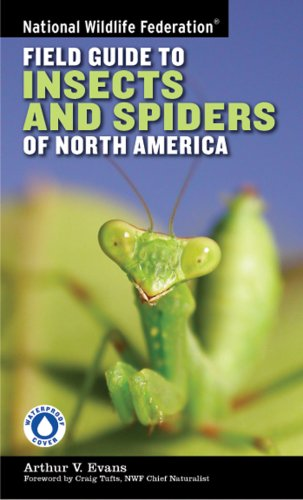 National Wildlife Federation Field Guide to Insects and Spiders & Related Species of North America 9781402741531