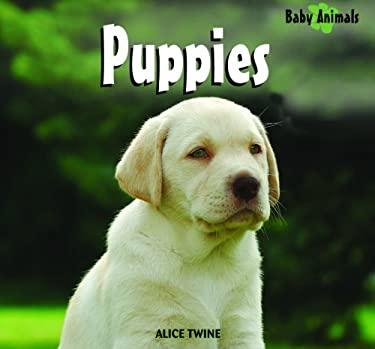 Puppies 9781404241435
