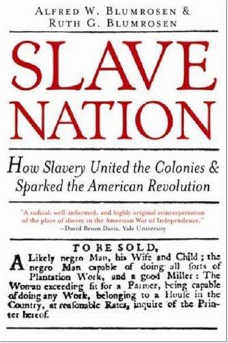 Slave Nation 9781402206979
