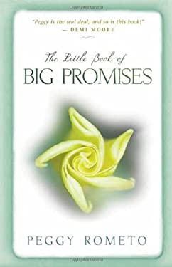 The Little Book of Big Promises 9781401924539