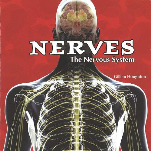 The Nervous System 9781404221833