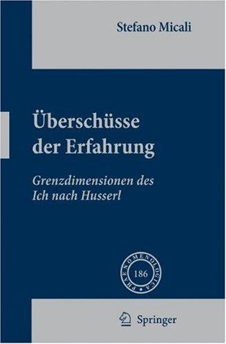 Uberschusse Der Erfahrung: Grenzdimensionen Des Ich Nach Husserl 9781402083884