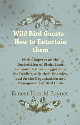 Wild Bird Guests - How to Entertain Them