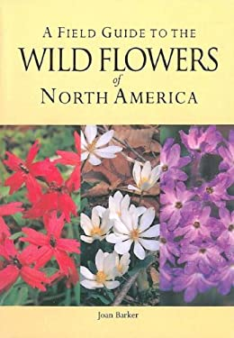 Wild Flowers 9781405463096