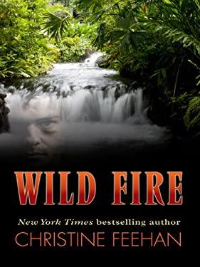 Wild Fire 9781410430427