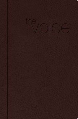Voice Bible-VC: Step Into the Story of Scripture 9781418549022