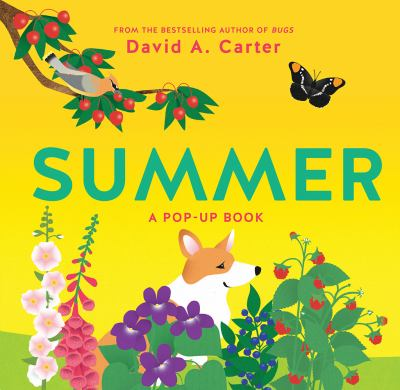 Summer: A Pop-Up Book (Seasons Pop-up)